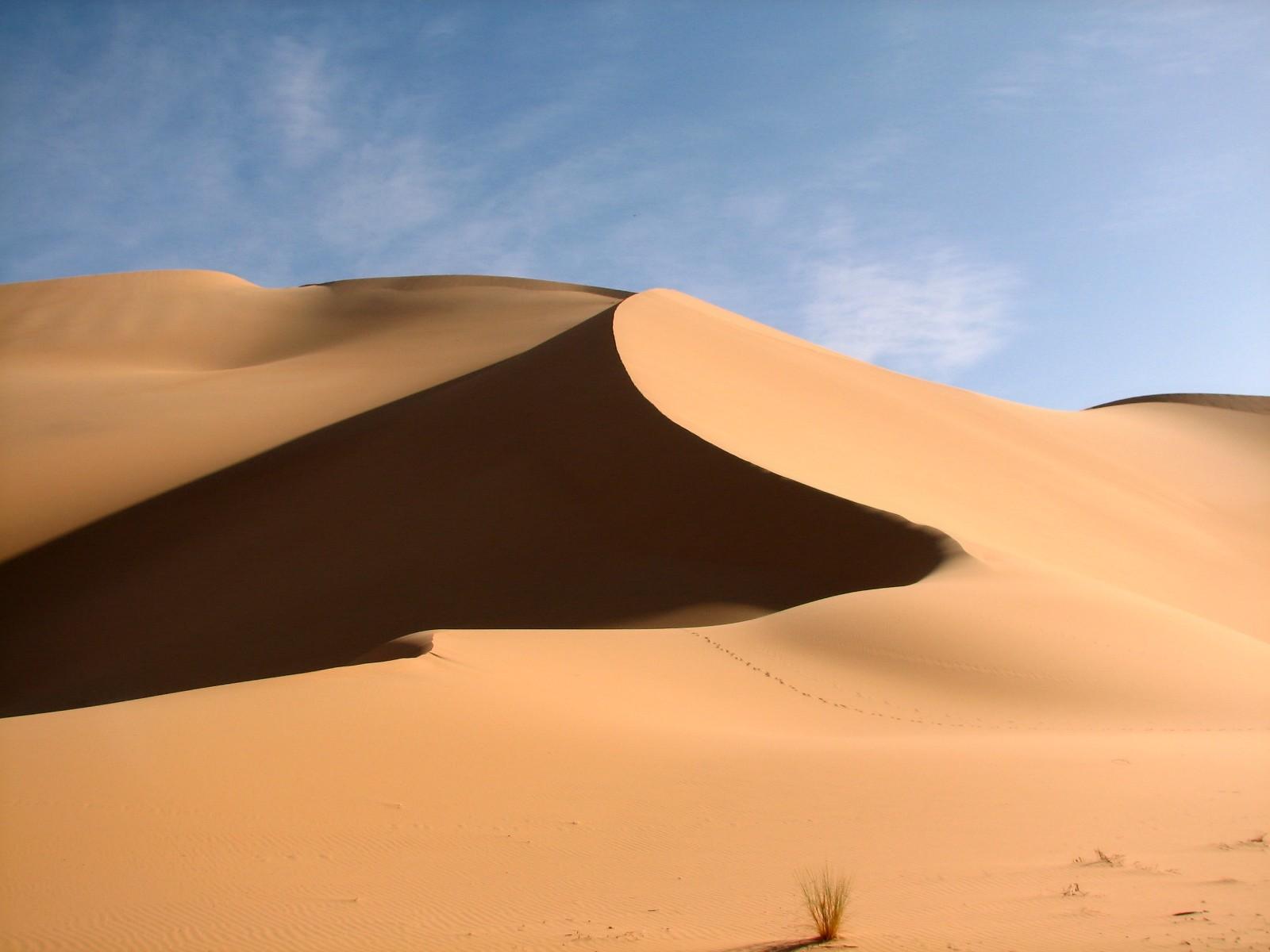 Фото у далекій пустелі 17 фотография